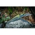 Wobler Majorcraft Zoner Jerk Bait 70 SP Silver Ayu