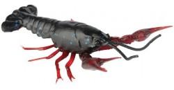 Raci 3D Crayfish