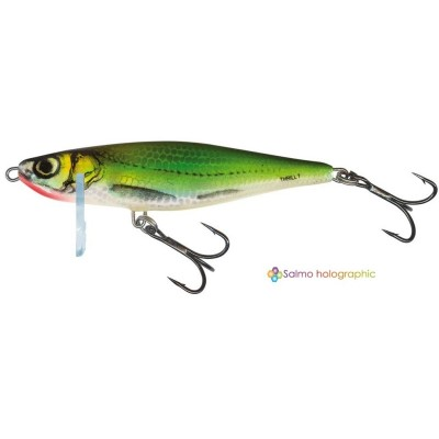 Wobler Salmo Thrill 09 S EF