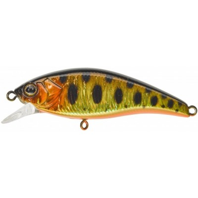 Wobler Illex Flat Tricoroll 5,5 cm S HL Gold Trout