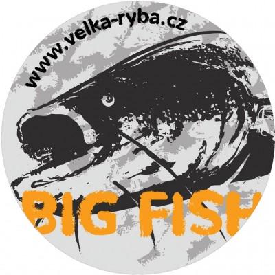 Fishing Sticker Catfish 130 mm