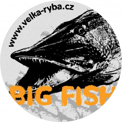 Fishing Sticker Pike 130 mm