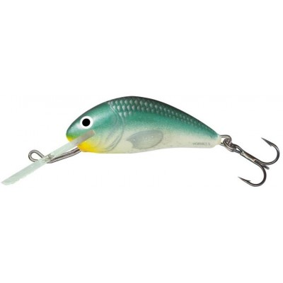 Wobler Salmo Hornet 02 S GBH