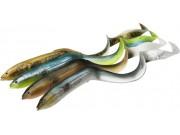 3D Real Eel